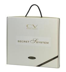 Secret System